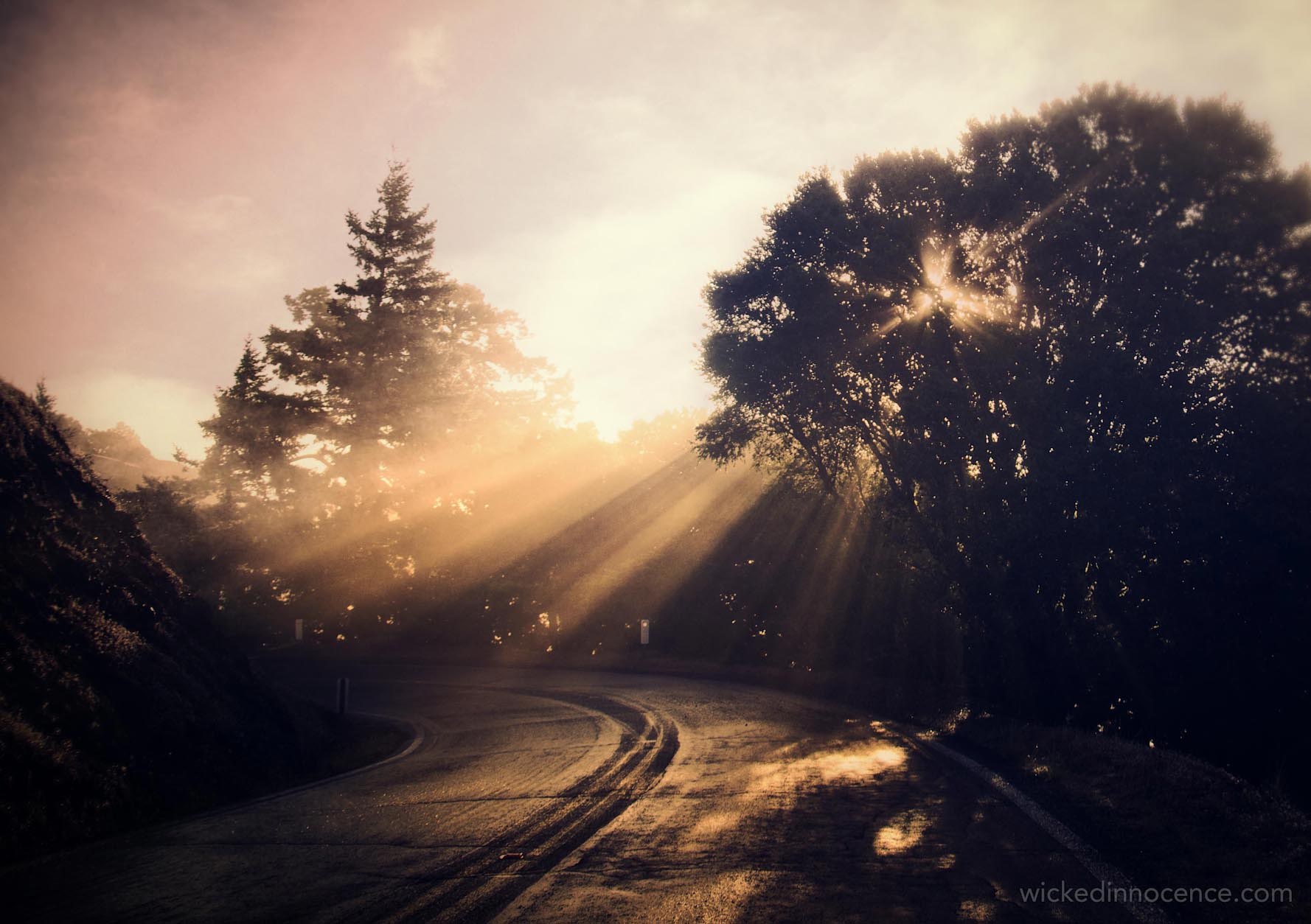 Sunlit Darkness